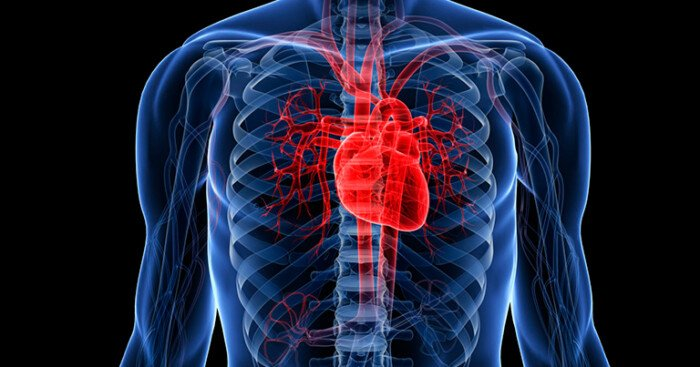 Як запобігти смерті від серцево-судинних хвороб: порада кардіолога